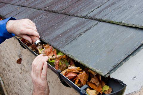 Entretenir et nettoyer sa toiture